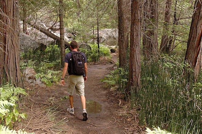 mist falls trail1