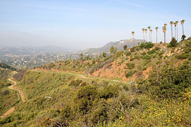 mount hollywood trail