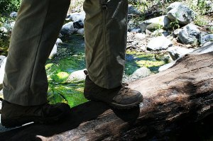 crossing mossy stream