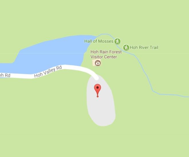 google_hoh_river_trail