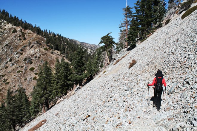 cucamonga_peak_trail