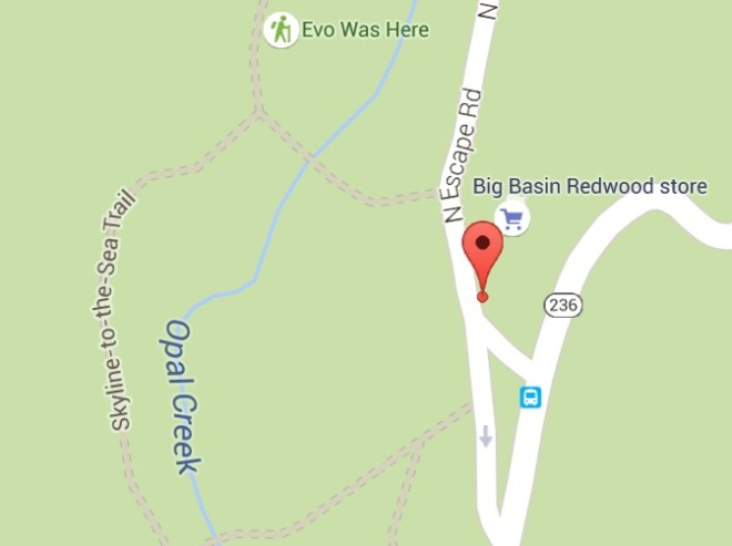 google_big_basin_park_hq