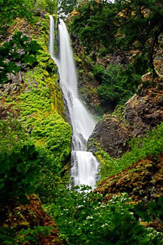 Starvation_Creek_Waterfall